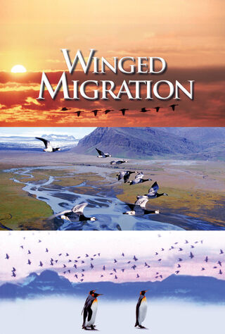 Winged Migration (2003) Main Poster