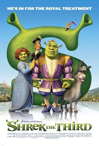 Shrek the Third (2007) Main Poster