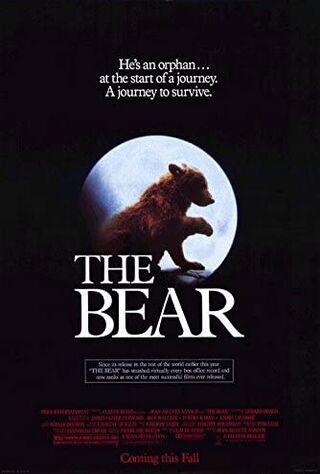The Bear (1989) Main Poster