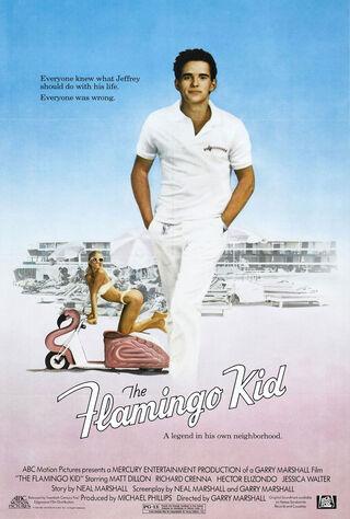 The Flamingo Kid (1984) Main Poster