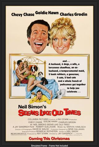 Seems Like Old Times (1980) Main Poster