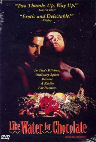 Como Agua Para Chocolate (1993) Main Poster