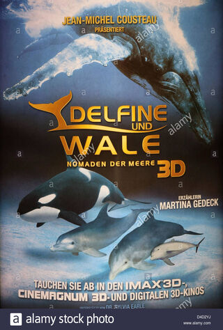 Dolphins And Whales 3D: Tribes Of The Ocean (2009) Main Poster