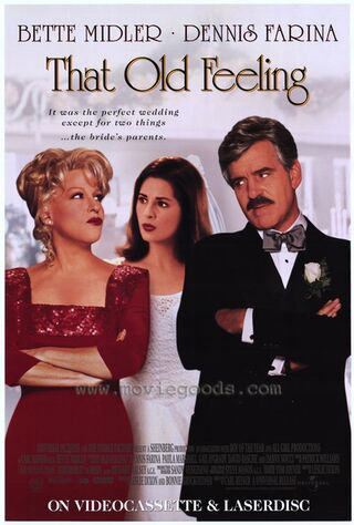 That Old Feeling (1997) Main Poster