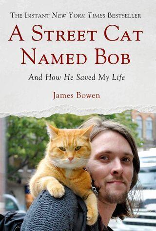 A Street Cat Named Bob (2016) Main Poster