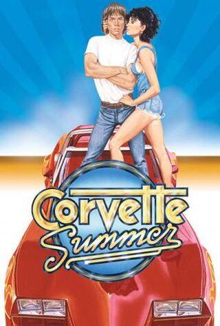 Corvette Summer (1978) Main Poster