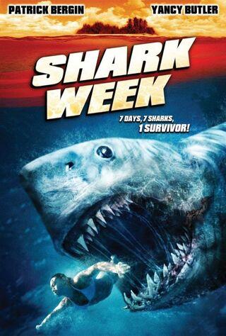 Sharks 3D (2008) Main Poster
