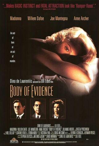 Body Of Evidence (1993) Main Poster