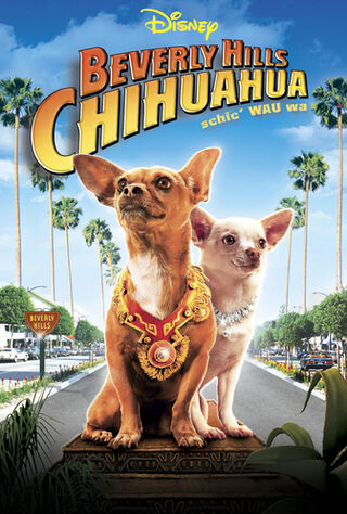 Beverly Hills Chihuahua (2008) Main Poster
