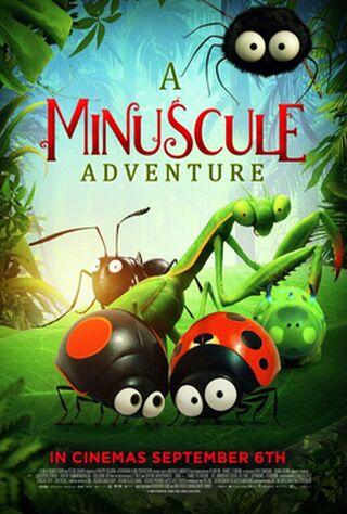 A Minuscule Adventure (2019) Main Poster