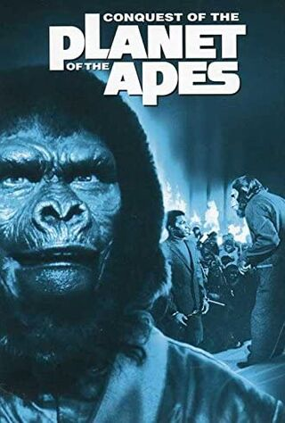 Conquest Of The Planet Of The Apes (1972) Main Poster