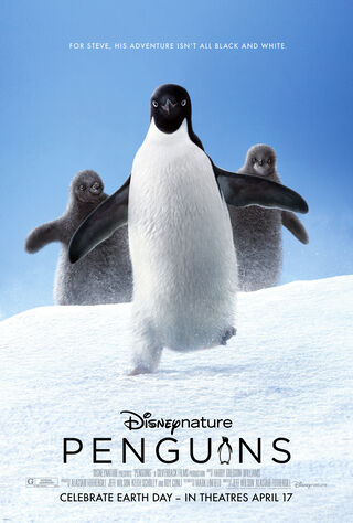 Penguins (2019) Main Poster