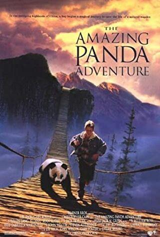 The Amazing Panda Adventure (1995) Main Poster