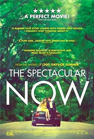 The Spectacular Now (2013) Main Poster
