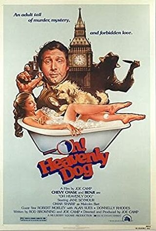 Oh Heavenly Dog (1980) Main Poster