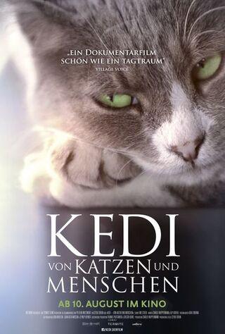 Kedi (2017) Main Poster