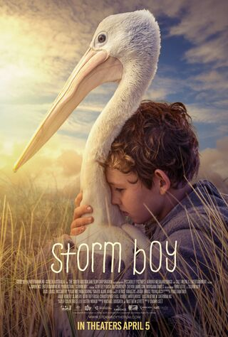 Storm Boy (2019) Main Poster