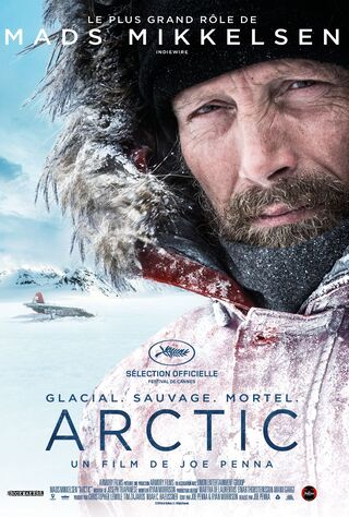 Arctic (2019) Main Poster
