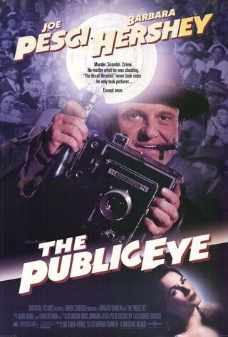 The Public Eye (1992) Main Poster