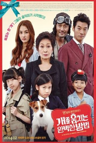 How To Steal A Dog (2014) Main Poster