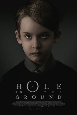 The Hole In The Ground (2019) Main Poster