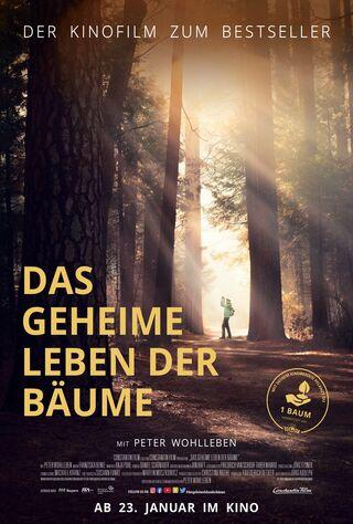 Das Geheime Leben Der Bäume (2020) Main Poster