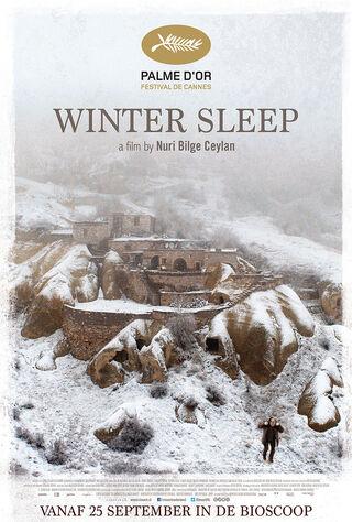 Winter Sleep (2014) Main Poster