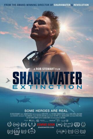 Sharkwater (2007) Main Poster