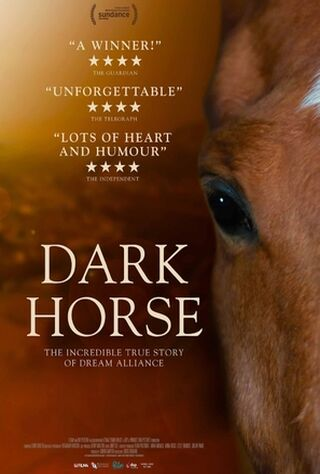 Dark Horse (2015) Main Poster