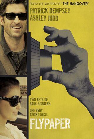 Flypaper (2011) Main Poster