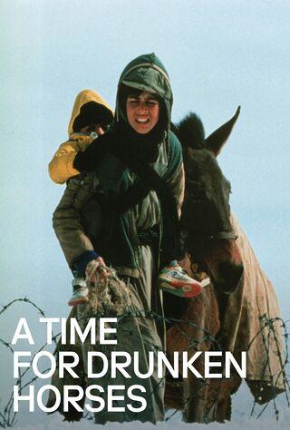 A Time For Drunken Horses (2000) Main Poster
