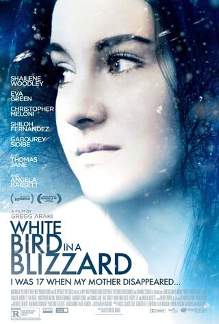 White Bird In A Blizzard (2014) Main Poster