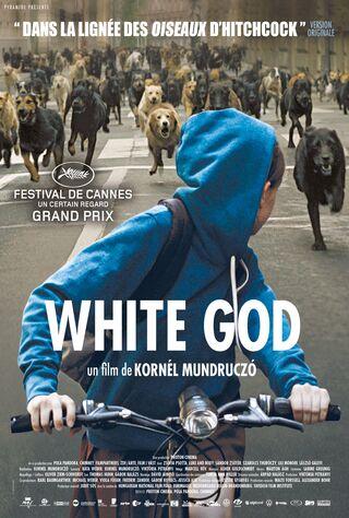 White God (2014) Main Poster