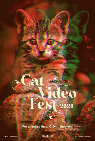 CatVideoFest 2020 (2020) Main Poster
