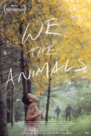 We The Animals (2018) Main Poster