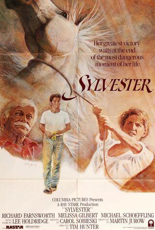 Sylvester (1985) Main Poster