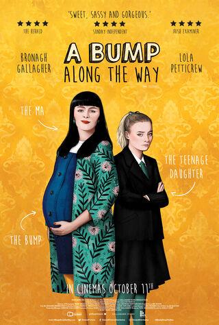 A Bump Along The Way (2019) Main Poster