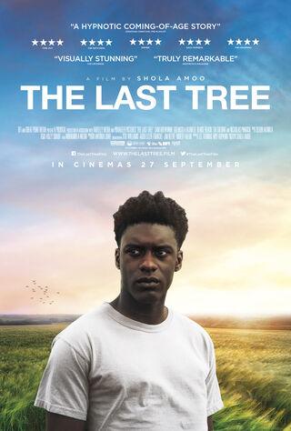 The Last Tree (2019) Main Poster