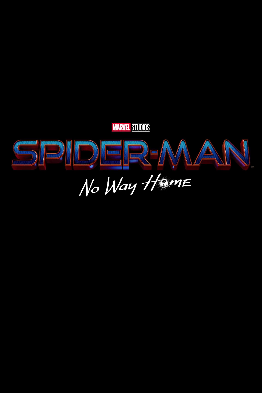 Spider-Man: No Way Home (2021) Poster #2