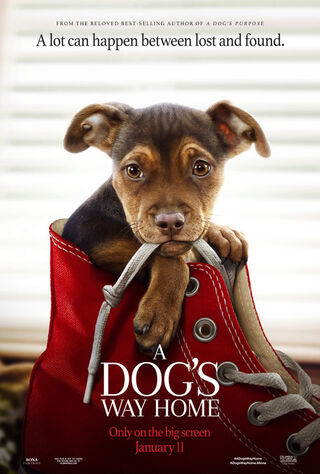 A Dog's Way Home (2019) Main Poster