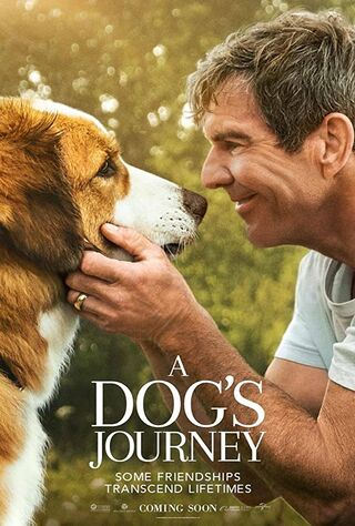 A Dog's Journey (2019) Main Poster