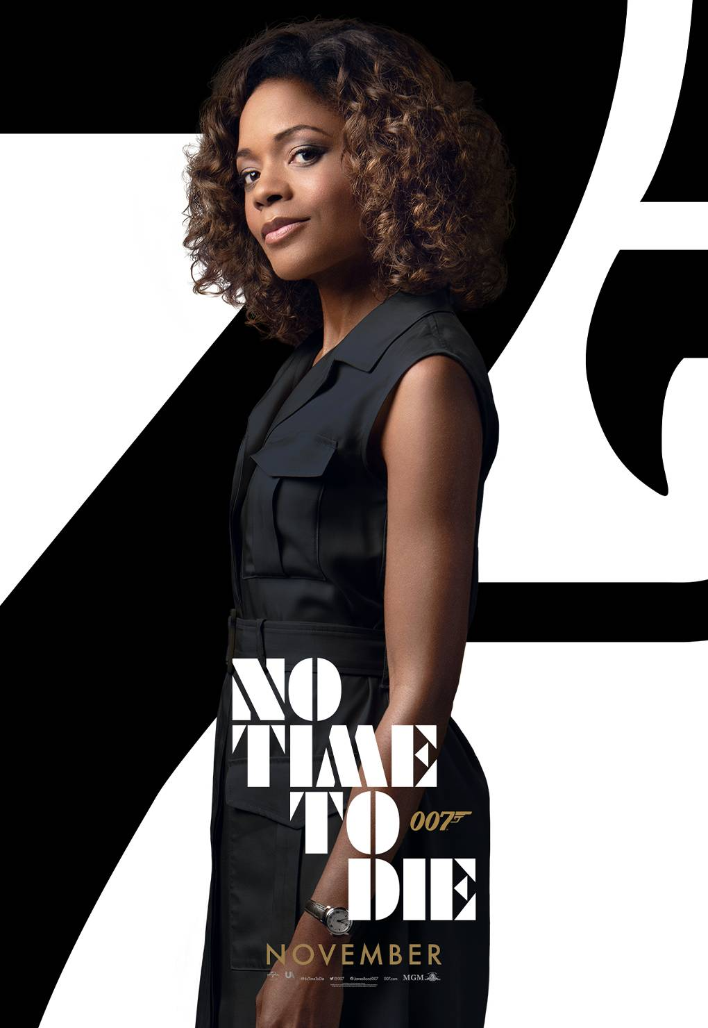 No Time To Die (2021) Poster #15