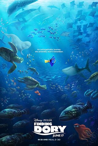 Finding Dory (2016) Main Poster