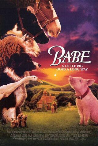 Babe (1995) Main Poster