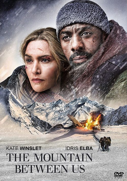 The Mountain Between Us (2017) Poster #2