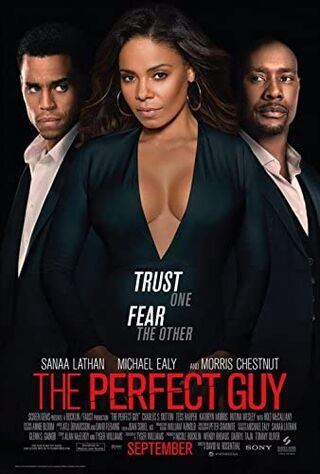 The Perfect Guy (2015) Main Poster