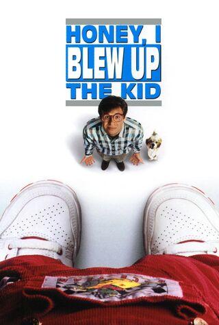 Honey, I Blew Up The Kid (1992) Main Poster