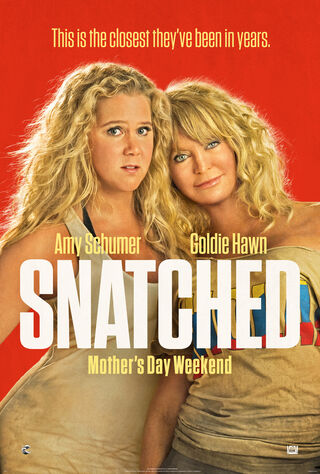 Snatched (2017) Main Poster