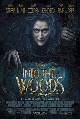 Into The Woods (2014) Main Poster