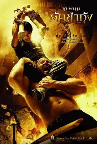 The Protector (2006) Main Poster